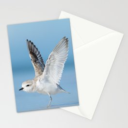 Snowy Plover Stationery Cards