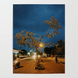 Lonely Tree at Night Poster