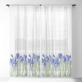 Blue Iris, Illustration Sheer Curtain