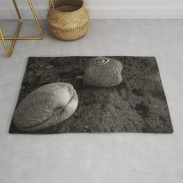 A Clam & A Barnacle Rug
