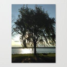 Tree & Bikes Canvas Print