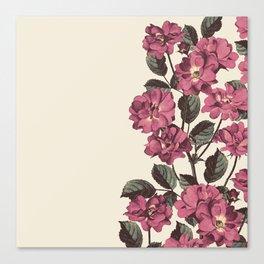 Vintage Garden (Wild Roses) Canvas Print