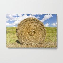 straw grass Metal Print