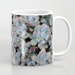 Pink Tips Succulents Coffee Mug