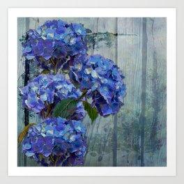 Hydrangeas Art Print