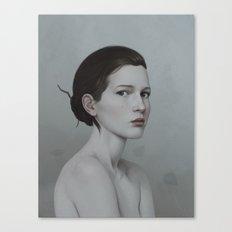 240 Canvas Print