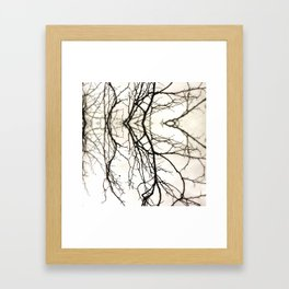 Branches #45 Framed Art Print