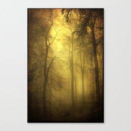 veiled trees Canvas Print