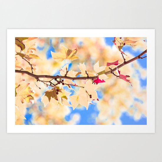 See the sky (Autum - Winter, leafs, pink, blue sky) Art Print