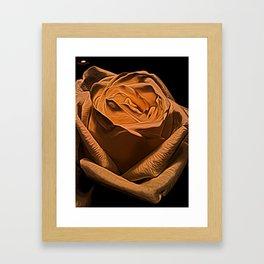 Rose Burnt Orange by David Brier Framed Art Print
