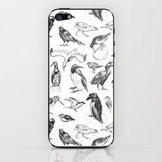 Manx Fauna - (British) Birds iPhone & iPod Skin