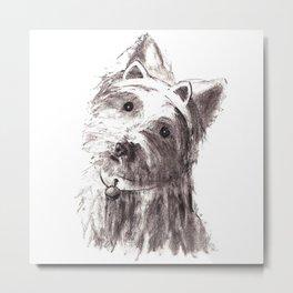 Bon Bon - the cat-like dog Metal Print