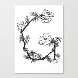 "Native Texas Plants ""G"" Canvas Print"