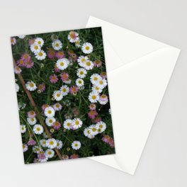 Cornwall Flower Gardens Photo 1770 Stationery Cards