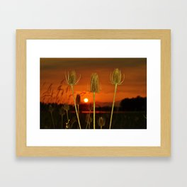 Threes Framed Art Print