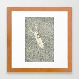 space beetle Framed Art Print