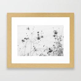 Sun Spots Framed Art Print