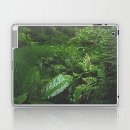 Old Growth Ferns Laptop & iPad Skin
