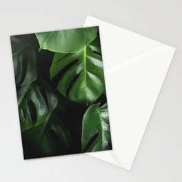 Monstera Plant Stationery Cards