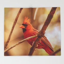 Male Northern Cardinal Throw Blanket