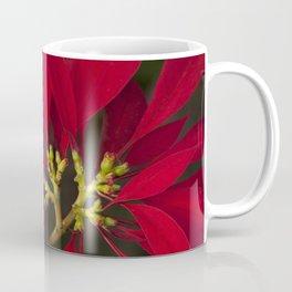 Poinsettia Red Euphorbia pulcherrima Coffee Mug