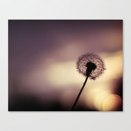 this is a world filled with love Canvas Print