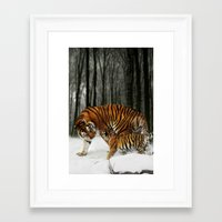 tigers Framed Art Prints featuring Tigers by Julie Hoddinott