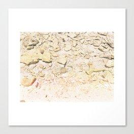fondo marino Canvas Print