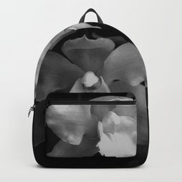 Midnight Gold - BW Backpack