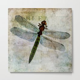 Dragonfly botanical nature print Metal Print