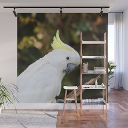 Cockatoo20150502 Wall Mural