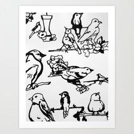 Cartoon Birds Art Print