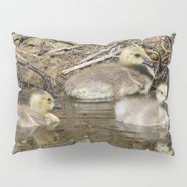 Goslings Pillow Sham