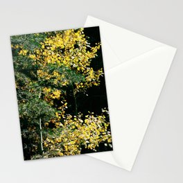 Gold and Evergreen Stationery Cards