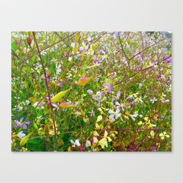 Vibrant Yellow-Green Meadow Canvas Print