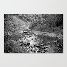 Waterfall Glen Canvas Print