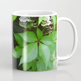 Virginia Log Creeper Coffee Mug