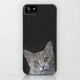 Pretty Kitty iPhone Case