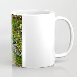 The Amazon Rock - Amazon, Brazil Coffee Mug