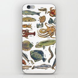 fishes and seafood iPhone Skin