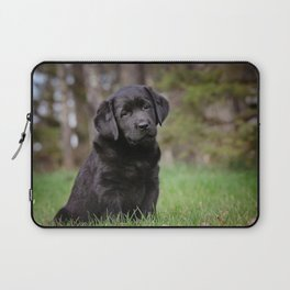 The Puppy Look Laptop Sleeve