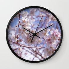Blossom, Bloomin Blossom.  Wall Clock