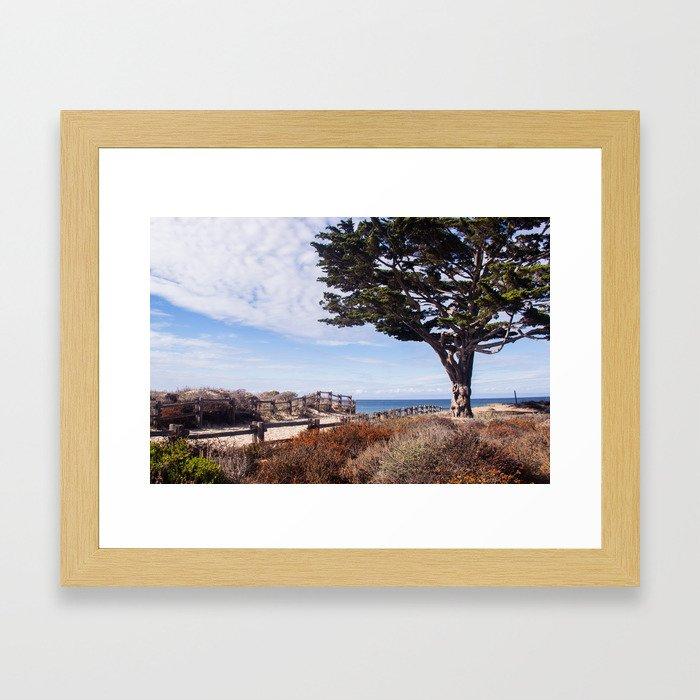 Enchanted beach Framed Art Print