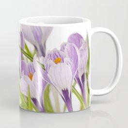 stripy purple crocuses on white Coffee Mug
