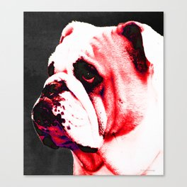 Southern Dawg By Sharon Cummings Canvas Print