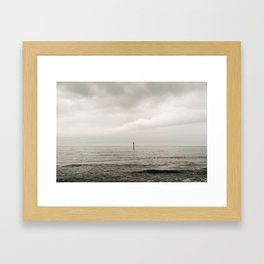 Killiney Beach Bird Watch Framed Art Print
