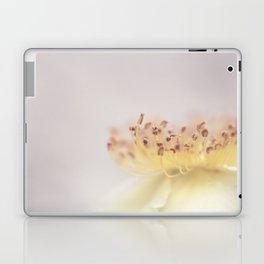 Miniature fireworks Laptop & iPad Skin