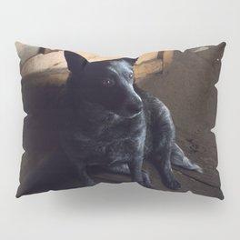 Heeler In Repose Pillow Sham