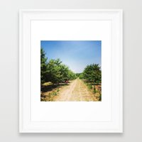 farm Framed Art Prints featuring Farm by Saba Hazaveh