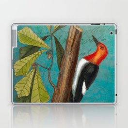 Red Headed Woodpecker with Oak, Natural History and Botanical collage Laptop & iPad Skin